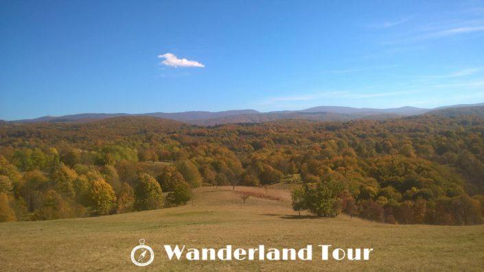 Wanderland Tour